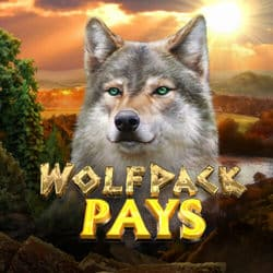 WolfpackPays